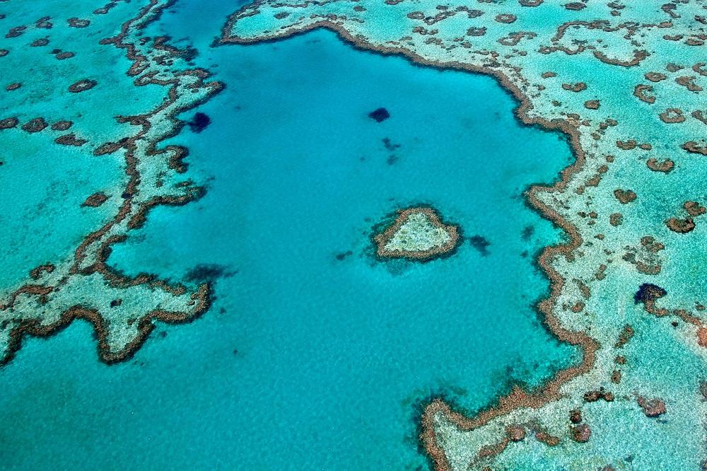 australia-barriera-corallina-2